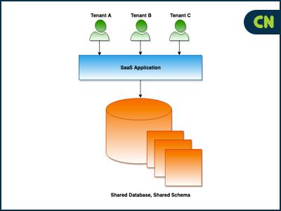 Shared Database, Shared Schema